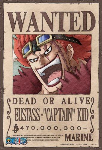 【ワンピース】キッド海賊同盟はカイドウの傘下に?その後を考察