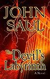 The Devil's Labyrinth (Center Point Platinum Mystery (Large Print))