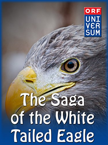 The Saga of the White-Tailed Eagle