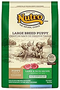 The Nutro Company Large Breed Puppy Food with Lamb and Whole Brown Rice Formula, 30-Pound