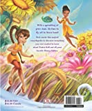 Disney Fairies: the Fairies Encyclopedia