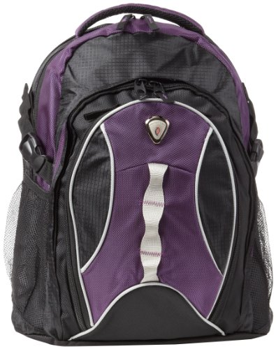 calpak-highway99-purple-18-inch-deluxe-backpack-with-laptop-compartment