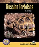 Russian Tortoises: A Complete Guide to Testudo
