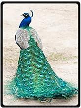 Beautiful Peacock Feather Comfortable Custom Unique Fleece Throw Blanket 58x80inch Large