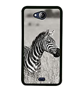 Zebra 2D Hard Polycarbonate Designer Back Case Cover for Micromax Canvas Play Q355