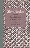 img - for Slave Families and the Hato Economy in Puerto Rico book / textbook / text book