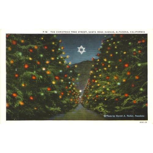 Amazon.com: 1940s Vintage Postcard The Christmas Tree Street - Santa