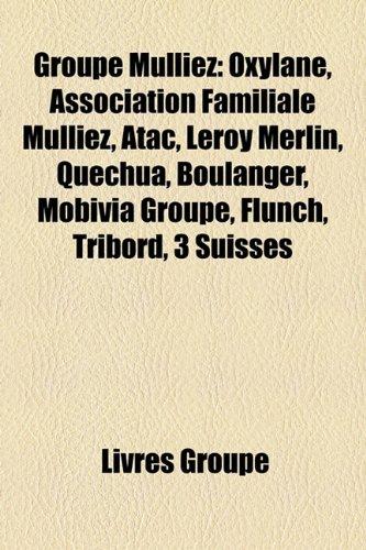 groupe-mulliez-oxylane-association-familiale-mulliez-atac-leroy-merlin-quechua-boulanger-mobivia-gro