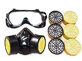 機能抜群 ! 防塵マスク ゴーグル 活性炭フィルター 6個 セット マスク 防塵ゴーグル 防塵 メガネ (防塵マスク, セット)