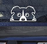 カーステッカー ボーダーコリー ドッグ 防水 シール 銀 小 ステッカー 犬 シルバー