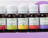 Just-Released-Essential-Oils-Aromatherapy-Kit-8-10ml-bottles-Great-for-an-Aromatherapy-Diffuser-Making-Lotion-DIY-Bath-Bombs-Perfect-Gift-Set-Includes-dropper-Geranium-Bergamot-Ylang-Ylang