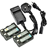 DSTE® 2pcs D-Li50 Rechargeable Li-ion Battery + Charger DC11U for Pentax K10D, K20D and Minalta NP-400