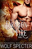 Dragon Fire (M/M Gay Shifter Mpreg Romance) (Wildfire Series Book 1) (English Edition)