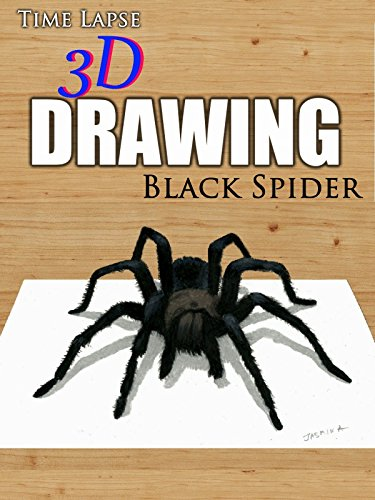 Time Lapse 3D Drawing: Black Spider