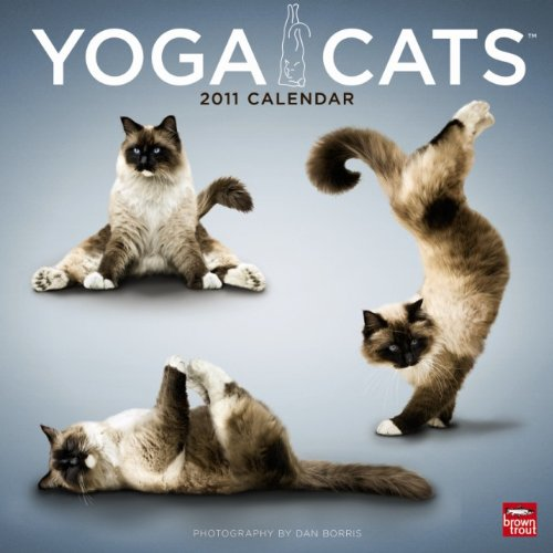 Yoga Cats Wall 2011