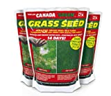 BULK PACK - Canada Green Grass Seed 5kg (10 x 500g) - HUGE SAVINGS ON POSTAGE