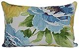Brentwood Originals 35618 Indoor/Outdoor Toss Pillow, 13 By 20-Inch, Muree Sunblue