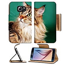 buy Msd Samsung Galaxy S6 Flip Pu Leather Wallet Case Maine Coon On Green Background Image 19378794