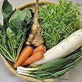 東北牧場 有機野菜6種 Pサイズセット