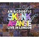 An Acoustic Skunk Anansie Live