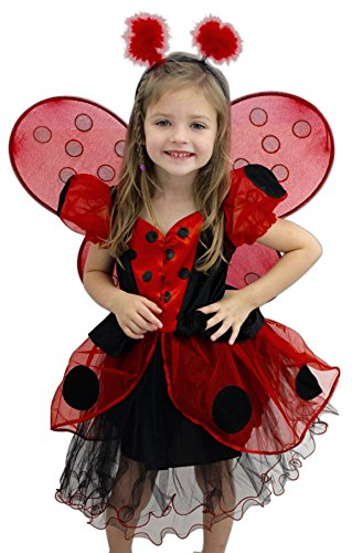 Bundle of 2 Great Pretenders Items - Ladybug Dress and Wings with Headband ()
