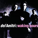 Waking Hours - Del Amitri
