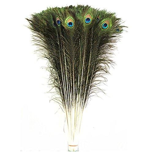 celine-lin-50-pcs-real-natural-plumas-de-cola-de-pavo-real-30-32-pulgadas