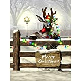 DODOING 3x5ft Merry Christmas Theme Winter Snow Vinyl Photography Studio Backdrop Photo Background