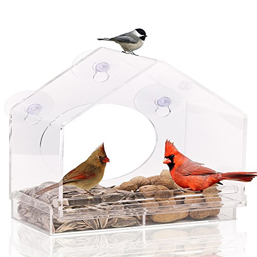 Large Premium Window Bird Feeder GUARANTEED FOR LIFE. Includes Easy Removable Tray, 4 Heavy Duty Suction Cups, Drain Holes & Stylish Packaging. Acrylic Outdoor Post Mounted Lantern