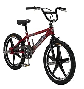 Amazon.com : Mongoose Raid Freestyle Bike (20-Inch Wheels, Metallic