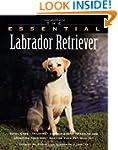 The Essential Labrador Retriever