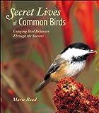 Secret Lives of Common Birds: Enjoying Bird Behavior Through the Seasons