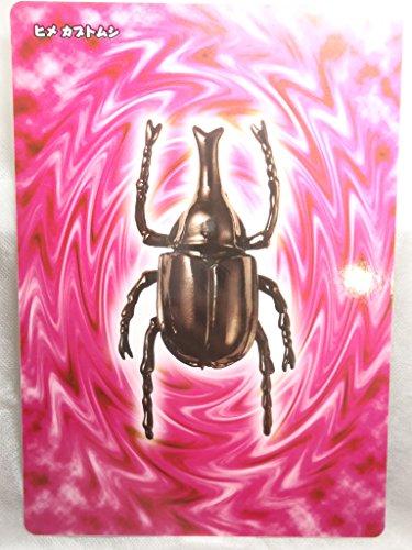 アーマード インセクト 格闘甲虫王 下敷き 文具 ヒメ カブトムシ