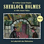 Im Labyrinth des Wahnsinns (Sherlock Holmes - Die neuen Fälle 29) | Andreas Masuth