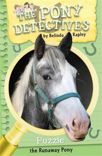 Puzzle, the Runaway Pony (The Pony Detectives)