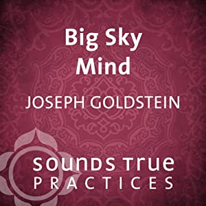Big Sky Mind Speech