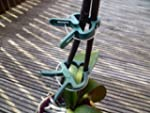 Lifetime Garden 83503 20x Plant Clips
