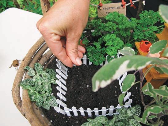 Gardens: Design And Create Miniature Fairy Gardens, Dish Gardens . Photo