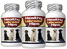 buy Healthy Labrador Hips For Joint And Hip Pain -- 90 Bacon Flavored Chewable Tablets -- Includes Free Ebook How To Increase Your Labrador'S Lifespan: Add 3, 4, Even 5 Healthy And Active Years To Your Pets Life - 90 Day Money-Back Guarantee