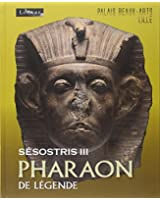 Sésostris III, pharaon de légende : Exposition au Palais des beaux-arts de Lille, du 10 octobre 2014 au 26 janvier 2015