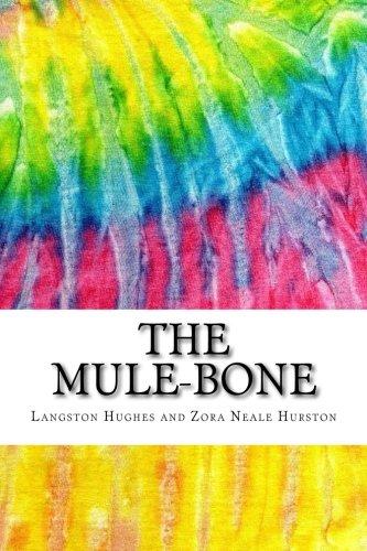 Critical essays on zora neale hurston