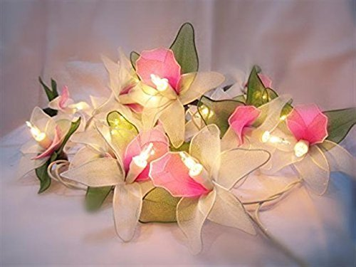 Thai Vintage Handmade Orchid Flower Fairy String Lights Wedding Party Floral Home Decor 3.5m 20 White Thailand By Copter Shop. (John Deere Kerosene compare prices)