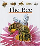 The Bee (First Discovery Series)