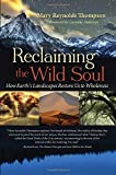 img - for Reclaiming the Wild Soul: How Earth's Landscapes Restore Us to Wholeness book / textbook / text book