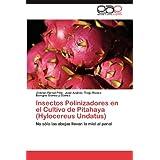 Insectos Polinizadores En El Cultivo de Pitahaya (Hylocereus Undatus): No sólo las abejas llevan la miel al panal...