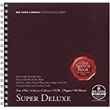 Bee Paper Super Deluxe Sketch Pad, 9-Inch by 9-Inch