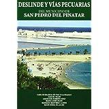 Deslinde y vias pecuarias del municipio de san pedro del pinatar