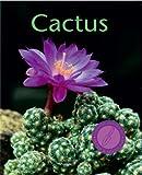 echange, troc Franz Becherer - Cactus