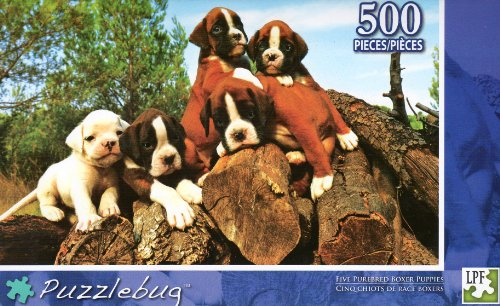 Five Purebred Boxer Puppies - Puzzlebug - 500 Pc Jigsaw Puzzle - NEW - 1