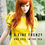 """One Cell in the Seavon """"A Fine Frenzy"""""""
